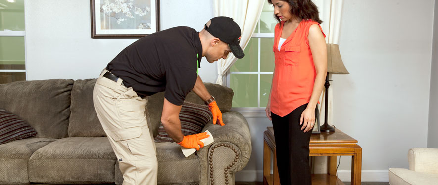 Phenix City, AL carpet upholstery cleaning